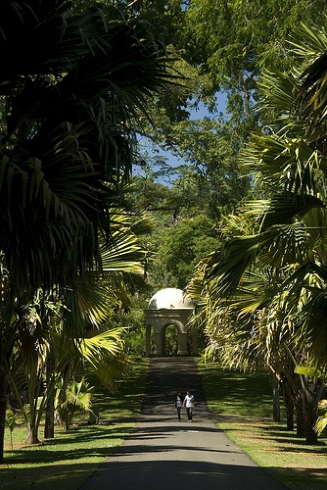 VIAJES AL SUR DE LA INDIA, SRI LANKA DESDE ARGENTINA - Colombo / Habarana / Hikkaduwa  / Kandy / Negombo / Parque nacional Yala /  - Viajes Exoticos