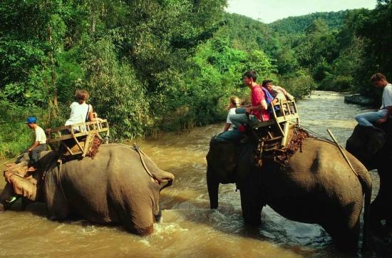 Turismo en Asia se esta renovando -  /  - Viajes Exoticos